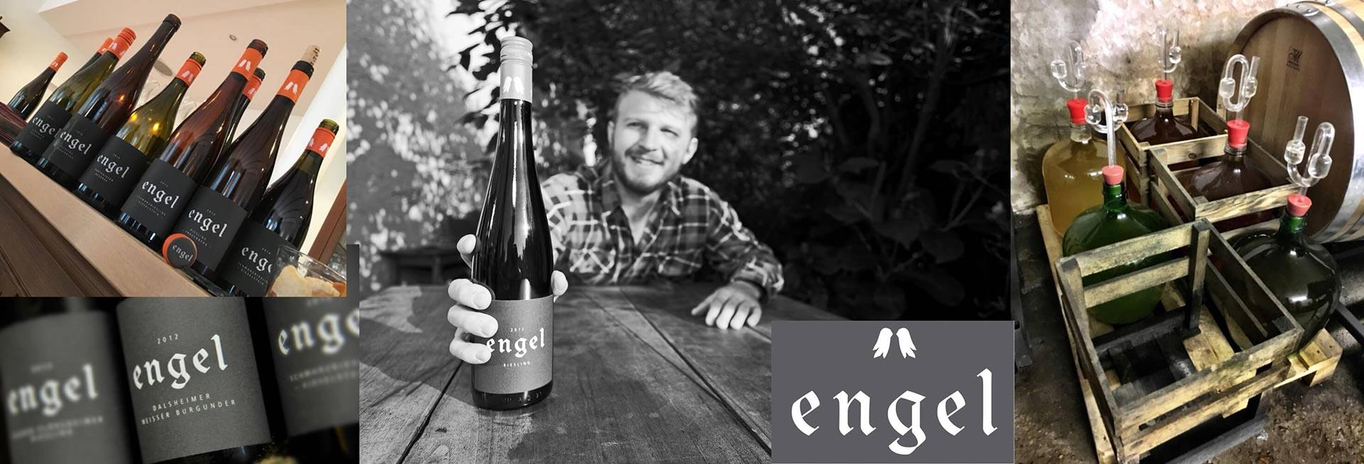 Weingut Albrecht Engel auf die-Weinsammlung.de