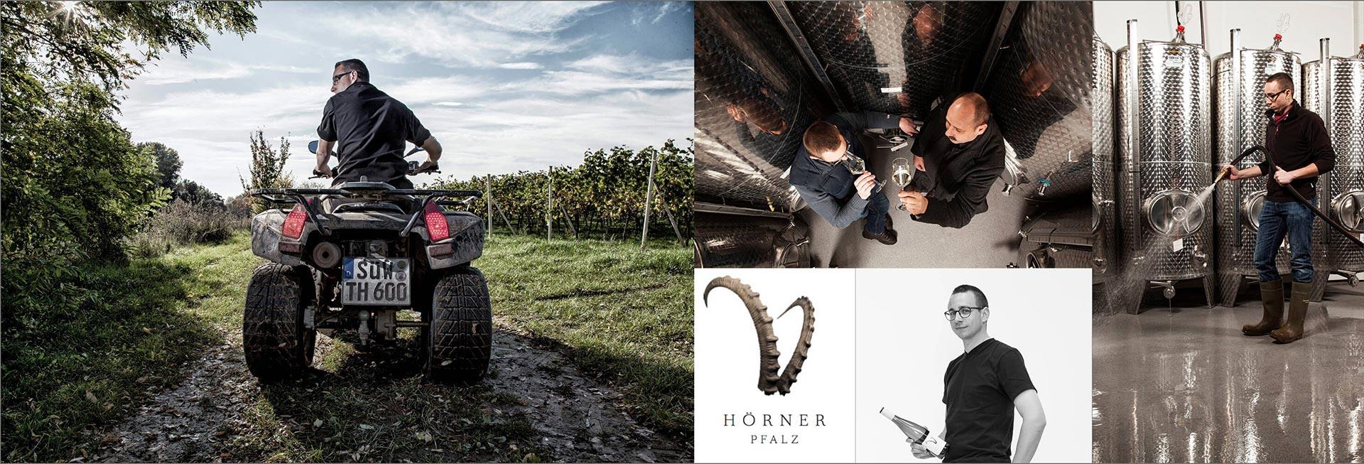 Hörner Weine aus der Südpfalz